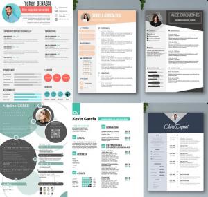 CV Exemple